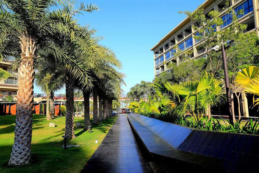 金月湾椰海小镇实景图