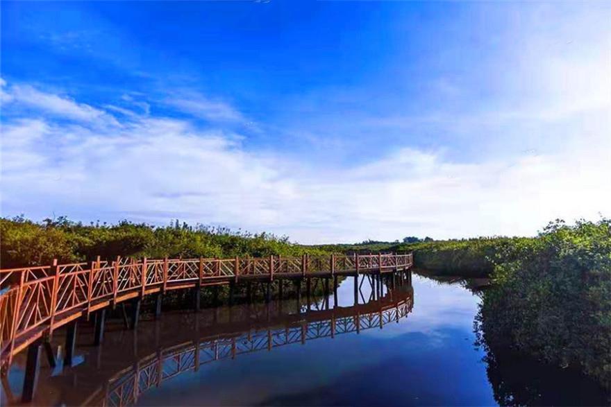 四季康城五期红树林湿地公园