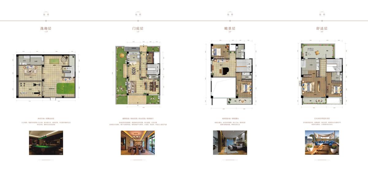 碧桂園中央半島4室6衛6廳1廚