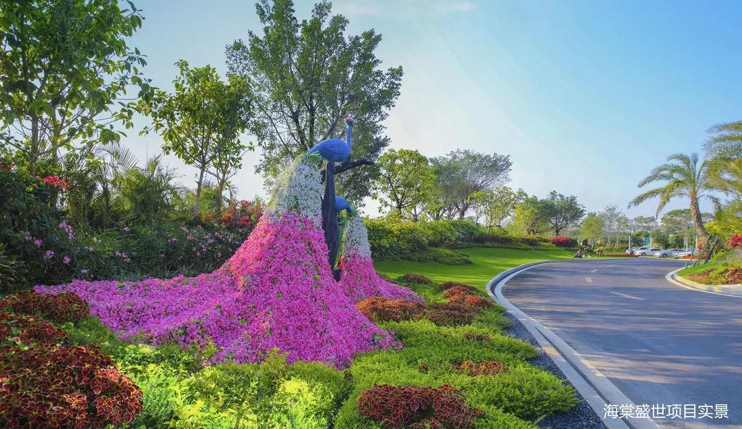 碧桂园海棠盛世实景
