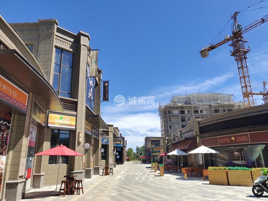 恒大雙海灣商業街實景圖