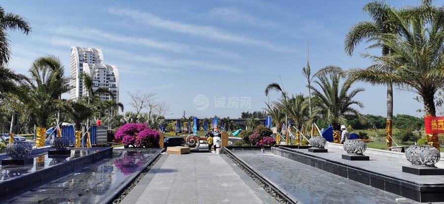 清鳳龍棲海岸實景圖